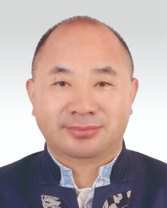 Mr. WANG Wenyin